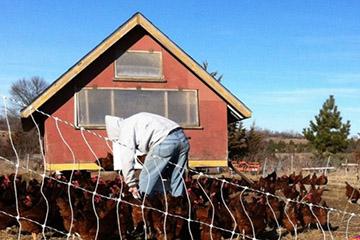 Forecast: Weak Farm Income Will Limit Growth in Nebraska Economy